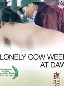 A Lonely Cow Weeps At Dawn ...